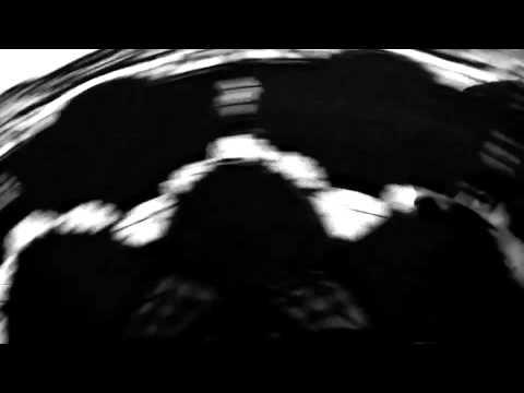 la danza de los pinceles 2010 (new trailer)