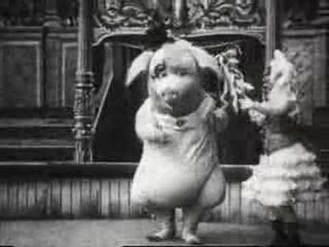 Le cochon danseur - el cerdo bailarín - dancing pig