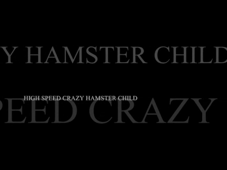 HIGH SPEED CRAZY HAMSTER CHILD