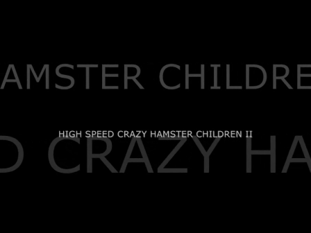 HIGH SPEED CRAZY HAMSTER CHILDREN II