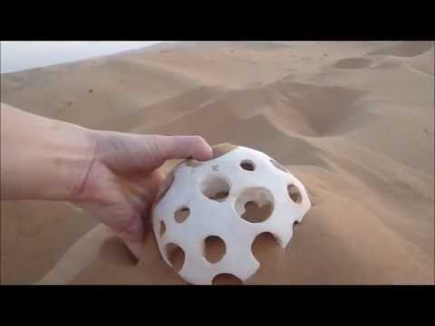 From the Bottom of the Sea Sculpture in the Empty Quarter Desert, January 2012.