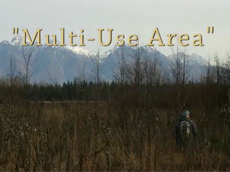Multi-Use Area by Elizabeth Bradfield