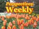 John McCain, Calvin Ayre, France, Poland, and the UIGEA! Perspectives Weekly April 25th, 2008