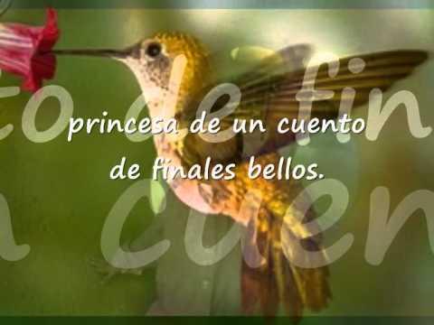 Alitas de colibrí