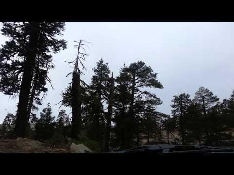 Bald Mountain Run 11-22-14