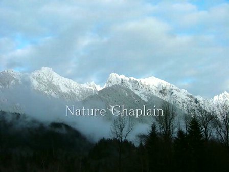 Nature Chaplain-If There is No God1
