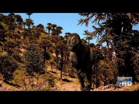 Bill Nye: 100 Greatest Discoveries : Evolution (Discovery Channel)
