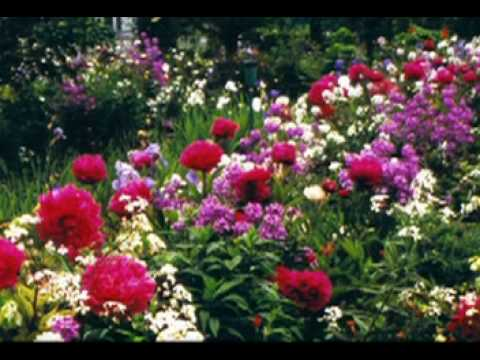 ♪Rancho das Flores♪