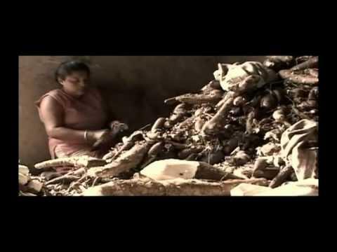 Olê Larinda - O Canto das Raspadeiras de Mandioca
