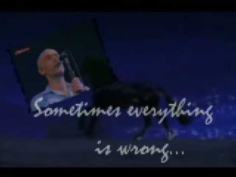 R.E.M ~  Everybody Hurts (Live)