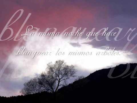 Pablo Neruda, Poema 20