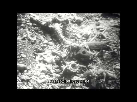 Nagasaki's holocaust - filmed by Akira Iwasaki and edited by Eric Barnouw