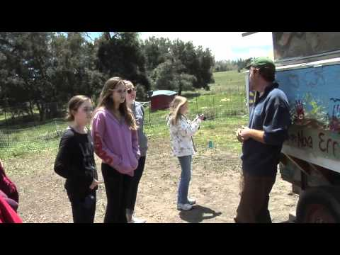 SEEDS: Eco-Logic for Teens at Camp Stevens (Julian, CA)