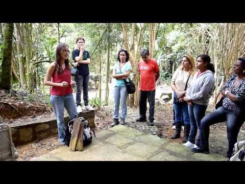"Amavel Project :""Sustentability at Atlantic Forest using Juçara Palm fruits"""