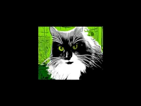 Ted Scarf_Stupid Cat Tricks