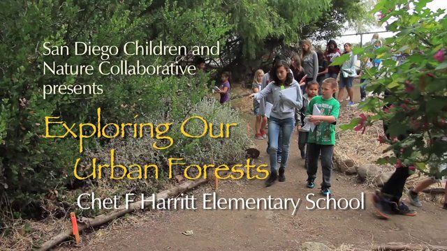 Exploring Our Urban Forests at Chet F Harritt Elementary School