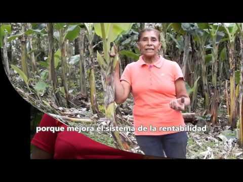 VIDEO PROYECTO FINLANDIA NICARAGUA