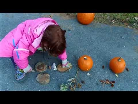 natural manipulatives for learning