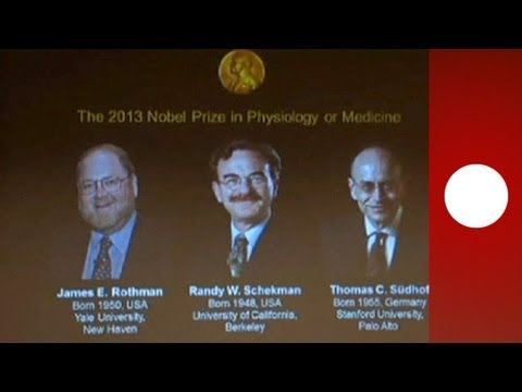 Two Americans and a German share Nobel prize for medicine