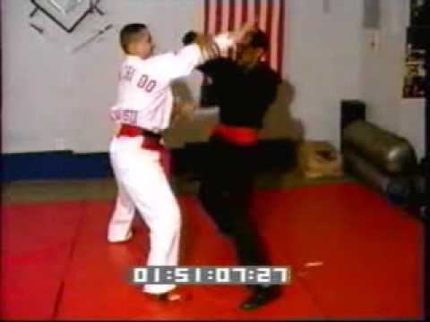 Prof GM. Irving Soto,Sifu David Lebron P(內家 nèijiā Playing,puch,hands trap hands