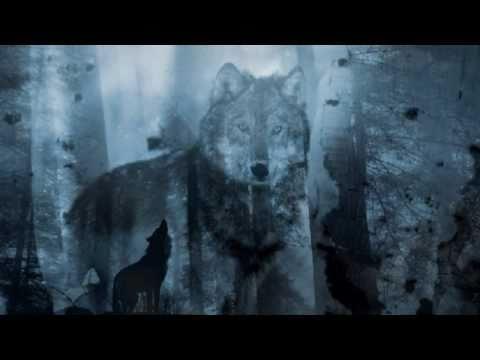 Dance of wolves - Loreena Mckennitt