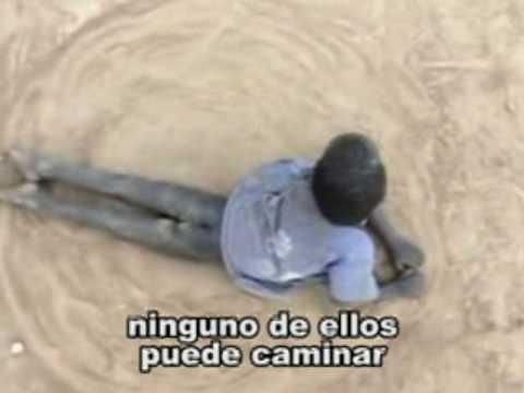 El Verdadero Sufrimiento y Dolor - Subtítulos en Español
