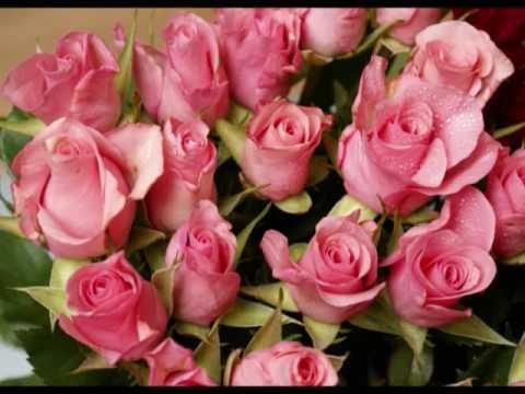 LAS MAÑANITAS--Muchas Felicidades Ms Alina Tavara