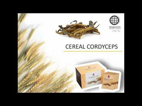 CEREAL CORDYCEPS DXN