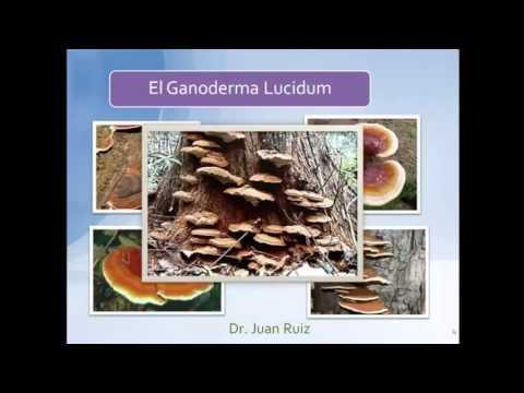 DXN España y Hector Malpica Ayala (Habla Dr. Ruiz Sobre el Ganoderma Conocido Medico Español)
