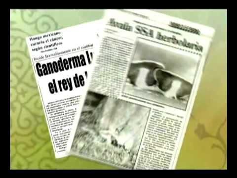 GANODERMA LUCIDUM : INVESTIGACION CIENTIFICA Y PERIODISTICA mpeg2video