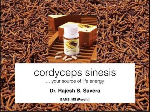 Webinar del Dr Savera sobre el Cordyceps