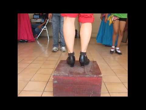 Pasos de La bamba Veracruz