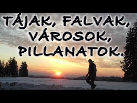 Feca rövidfilmek - Medvék a Szent Anna-tónál.