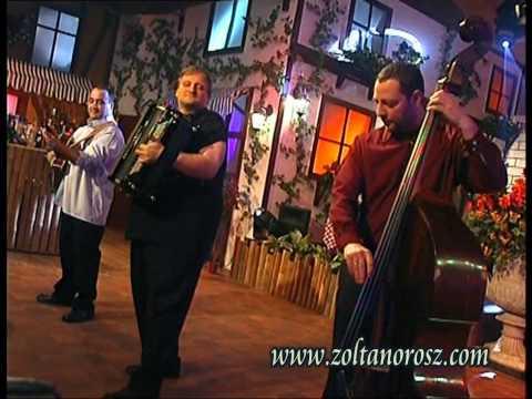 Orosz Zoltán Trió - J.Brahms.V.Magyar tánc - Hungarian Dance - Ungarische Tanz