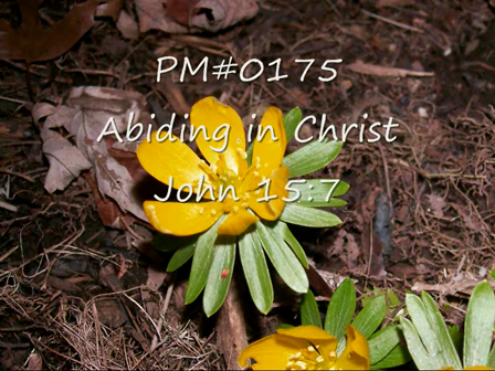 PM#0175 Abiding in Christ John 15-7