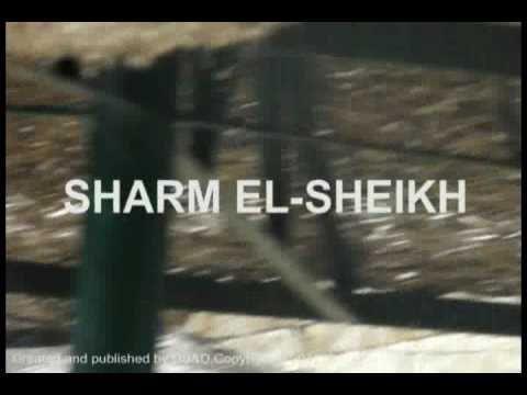 sharm el-sheikh beach