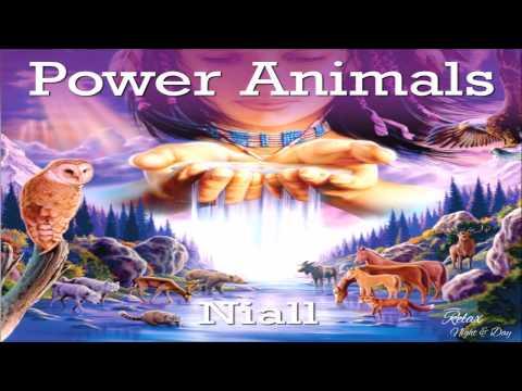 ♫ Shamanic Music   Native American Indians Spiritual Shaman Music