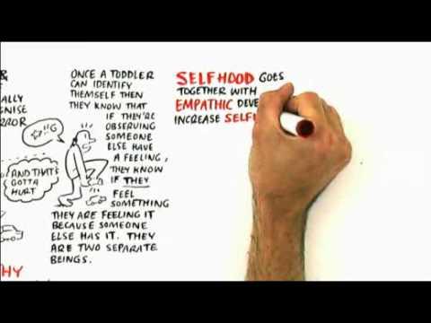 RSA Animate - The Empathic Civilisation