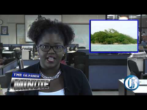 THE GLEANER MINUTE: Murder figures climb...Goat Islands not suitable for transshipment port...
