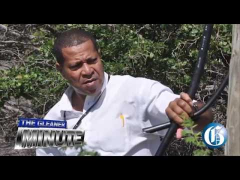 THE GLEANER MINUTE: LIME robbed … Alpart to produce jobs … Schäfer's appeal