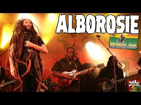 Alborosie - Herbalist   Can't Cool  Rock The Dancehall @ Reggae Jam 2016