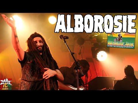 Alborosie - Rocky Road  No Cocaine @ Reggae Jam 2016