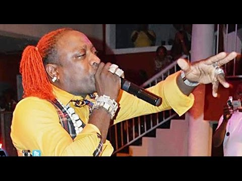 ELEPHANT MAN LIVE IN USA CONNECTICUT.