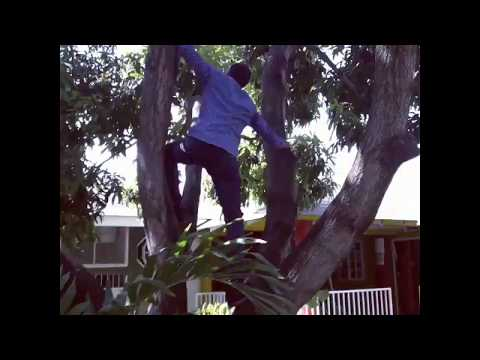 Ninjaman the real Don Gorgon shows off his Ninja Climbing Skills