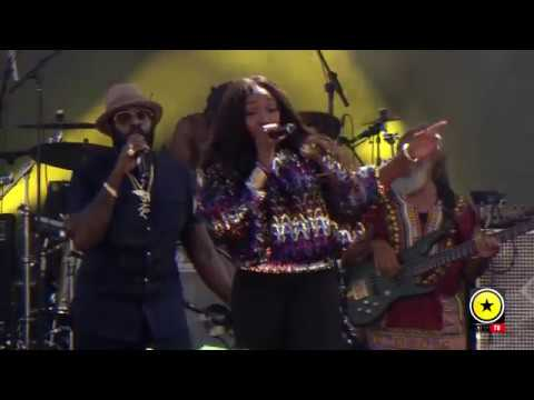Tarrus Riley Ft Estelle Live: Groovin In The Park 2017 Moments