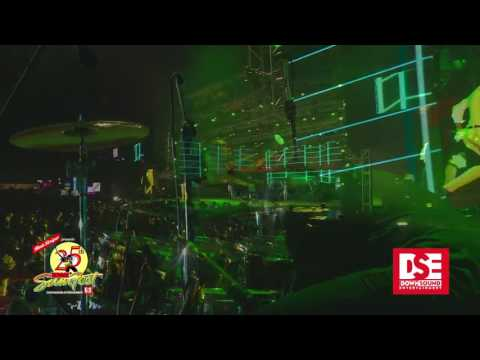 Aidonia & Govana performance highlights at Reggae Sumfest 2017