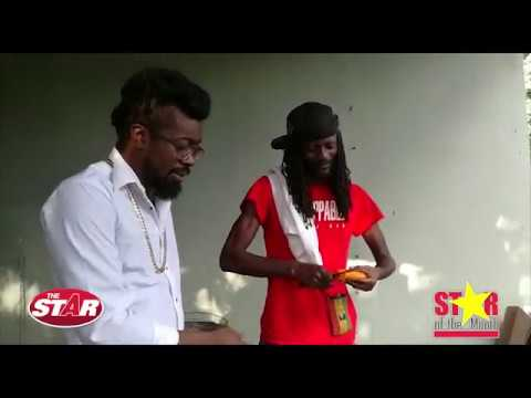 Beenie Man's 'Unstoppable Swimmers'