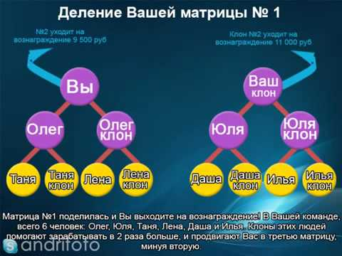 Альфа лидеры в проекте Aimania презентация)