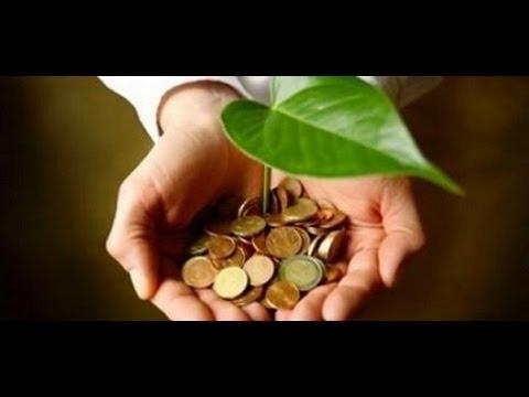 Agro Invest Trading LP