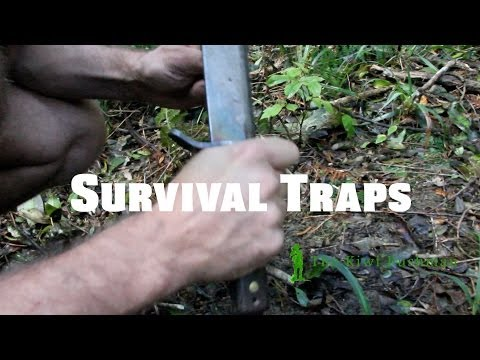 survival small animal trap #1